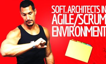 Software Architects In Agile/Scrum Environments