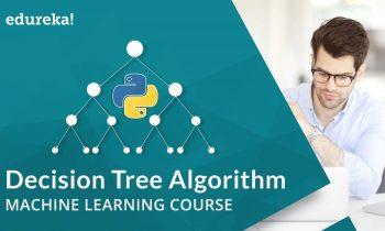 Decision Tree Algorithm | Decision Tree in Python | Machine Learning Algorithms | Edureka