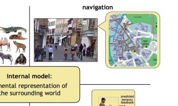 Dr. Máté Lengyel – Bayesian models of perception, cognition and learning – CCCN 2017